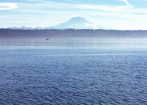 Must see:  Vashon Island day trip.  A stunning sight, just a 20 minute ferry ride from Seattle!