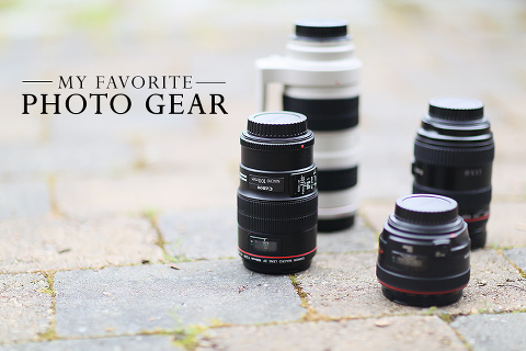 Get camera recommendations and tips on lenses & other photography gear from a professional photographer!