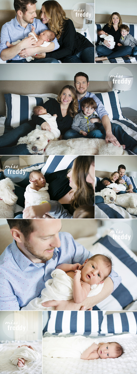 Lifestyle newborn photos with Miss Freddy are the perfect way to document the fleeting early days in the comfort of your own home!