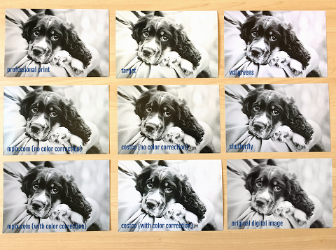 A professional photographer does a photo print comparison test.  The results are surprising!